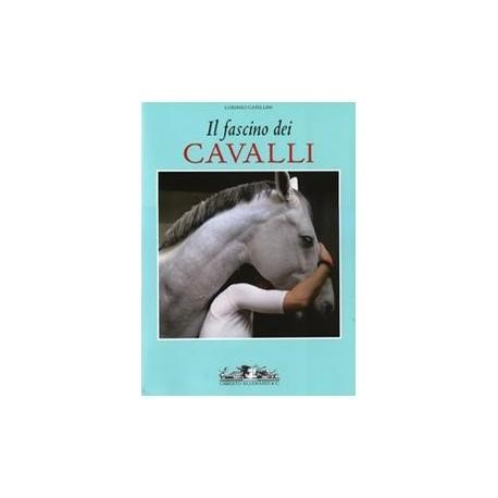 Il fascino dei Cavalli